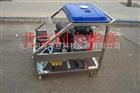 汽(柴)油驱动高压清洗机YE2420P