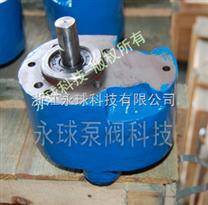 微型齿轮泵CB-B(S)型|齿轮泵