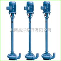 NL型液下式污水泥浆泵