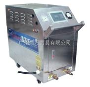高溫蒸汽清洗機