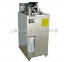 立式压力蒸汽灭菌器 YXQ-LS-50A