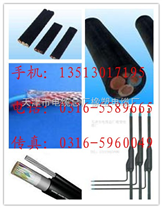 DJYPV計算機通信電纜廠家 0316-5589665