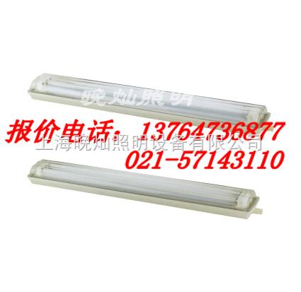 FAY6010,FAY6010全塑荧光灯,上海厂家
