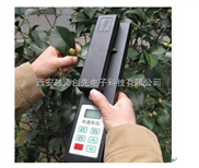 便携式叶面积测 定仪/叶面积测量仪/植物叶面积仪/叶面积扫描