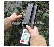 便携式叶面积测定仪/叶面积 测量仪/植物叶面积仪/叶面积扫描仪