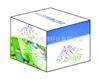 激素类ELISA试剂盒