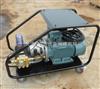 WD3521进口高压清洗机