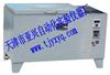 砖瓦爆裂蒸煮箱型号ZSA-5A报价 销售厂家 供应商